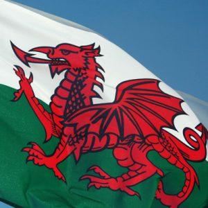 Care Regulation in Wales – Friend or Foe?